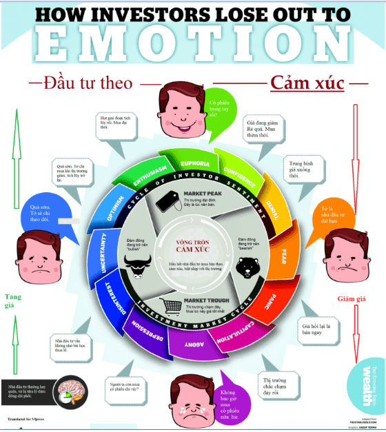 Vòng tròn cảm xúc trong đầu tư.