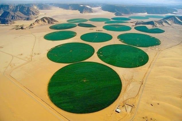 Các cánh đồng và nông trại của nông dân Do Thái ở Israel giống như những ốc đảo trên hoang mạc khô cằn.