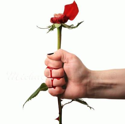 Phí hoa hồng