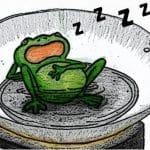 đun sôi con ếch