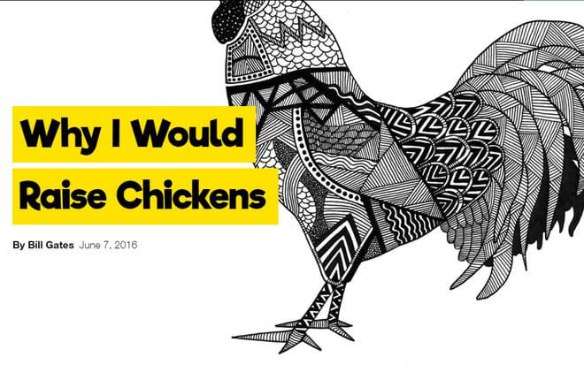 Bill Gates dạy cách làm giàu với 2 USD và … một con gà