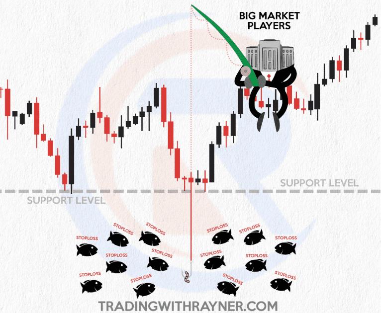 """Các trader bị """"cá mập"""" săn stoploss như thế nào"""