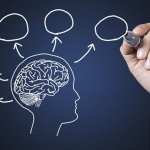 hoạt động đa nhiệm não bộ