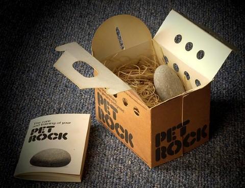 Thành công của Pet Rock khiến không ít người kinh ngạc