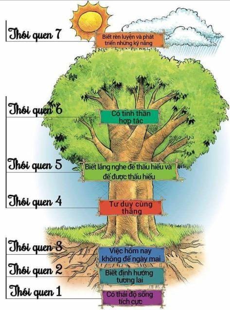 7 thói quen này cũng tựa như một cái cây. Càng lên cao càng khó rèn luyện.
