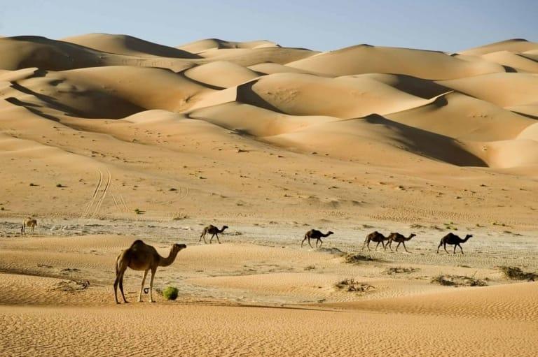 Hàng tỷ tỷ thùng dầu nằm dưới những sa mạc cát bao la đã chấm dứt sự êm đềm tại Trung Đông.