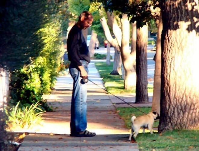 Tại sao Steve Jobs thường họp trong những lúc mà ông đi bộ mỗi ngày?