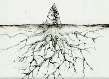 Bài học cho những người chưa thành công - Bạn có dám can đảm sống như cây mao trúc?