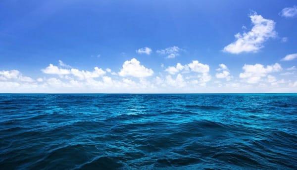 Mặt biển cũng luôn luôn biến động với những gợn sóng nhấp nhô chuyển động cùng chiều, ngược chiều hoặc chuyển động ngang so với hướng của những con sóng lớn