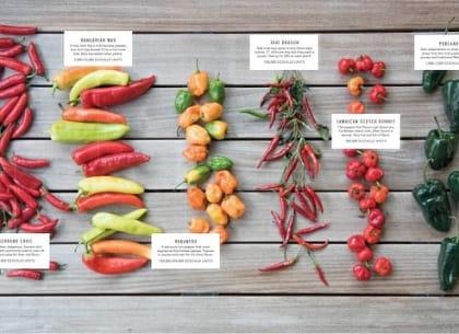 Câu chuyện bán ớt – bài học thú vị trong bán hàng