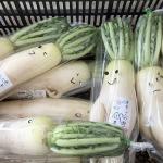 Nông dân Nhật Bản đã biến rau củ thải loại thành món hàng bán chạy như thế nào?