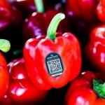 Thương hiệu nông sản Việt và lời giải Blockchain