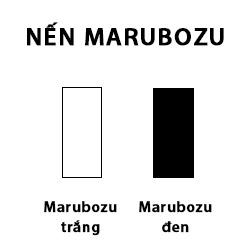 CHỨNG KHOÁN ABC: Nến thân dài và nến Marubozu