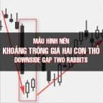 CHỨNG KHOÁN ABC: Mẫu hình nến khoảng trống giảm giá hai con thỏ (Downside gap two rabbits)