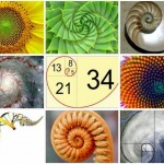 Dãy số kỳ diệu Fibonacci - tỉ lệ vàng mang lại lợi thế lớn trong bất kỳ thị trường nào cho nhà đầu tư