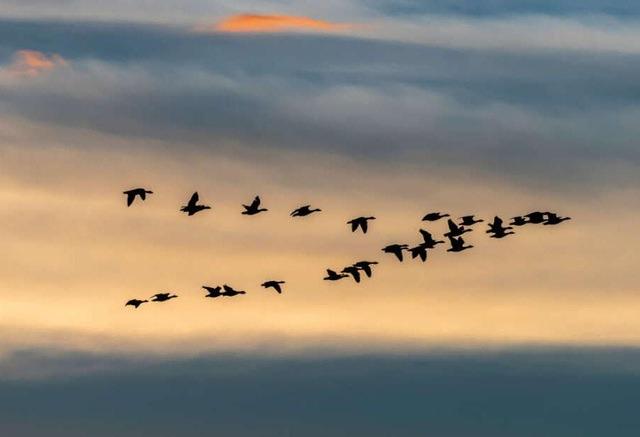 12 câu chuyện kinh doanh kinh điển nên đọc