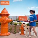 """""""Chỉ sử dụng những gì bạn cần"""": Chiến dịch kêu gọi tiết kiệm nước của Denver Water"""